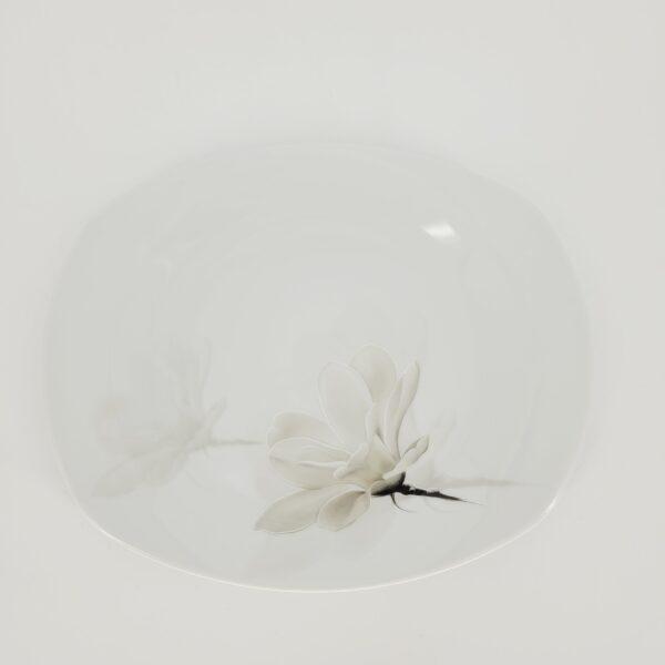 magnolia avokado